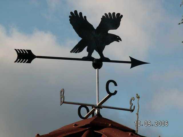 Орел - еще одна популярная тематика