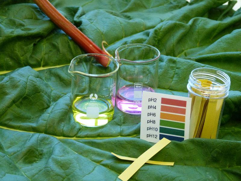 В стакане воды растворяют 5 ч.л. вещества, температура воды должна быть комнатной
