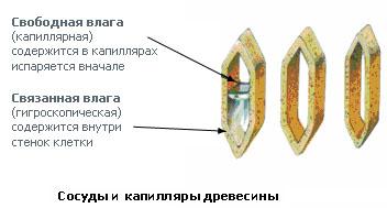 Разница между типами влаги